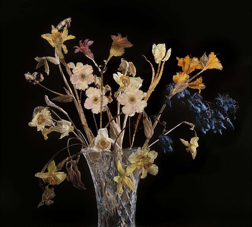 Photographies couleurs et fleurs cousues